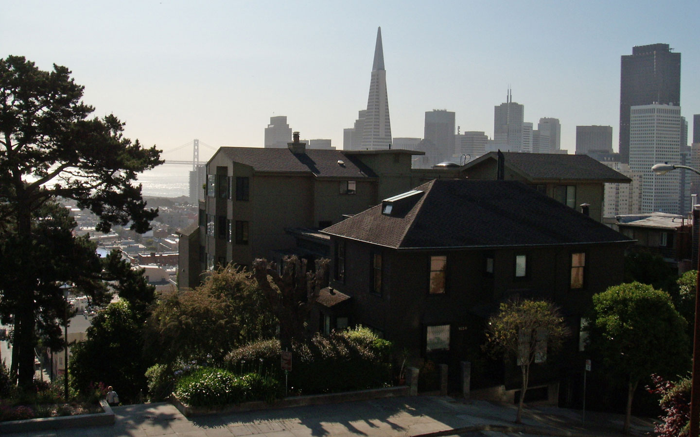 This picture was taken at Russion Hill in San Francisco with view to Financial Distrct.